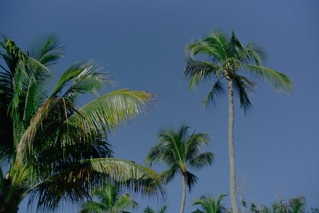 florida-1006456.jpg